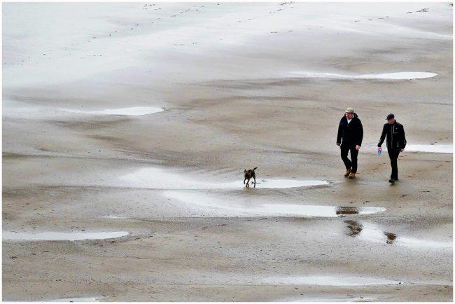KCC.Walking the dog